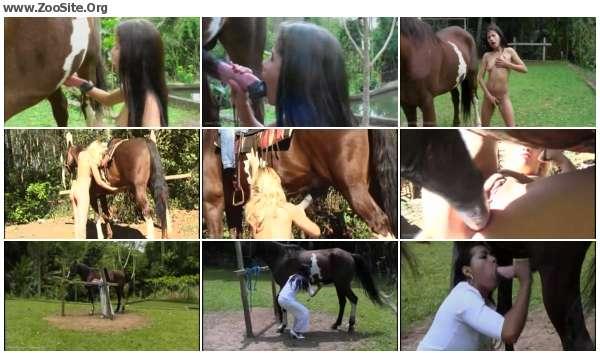 3fdd62606054073 - Horse Story 8 - Horse Porn Video