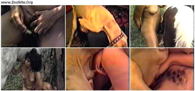 120ccf622030893 - Bizarre International Vol  6 - Bestiality Movie
