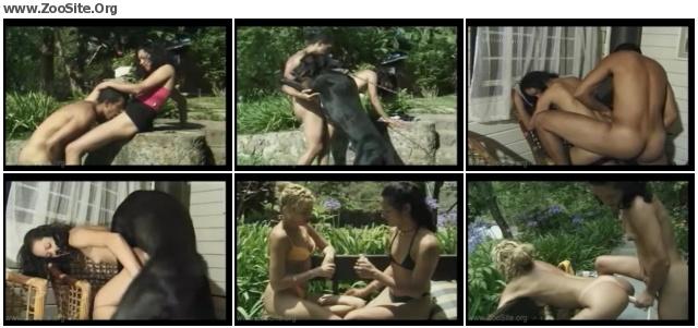 1327db635156143 - RUSTY LOVER - Animal Sex Cinema