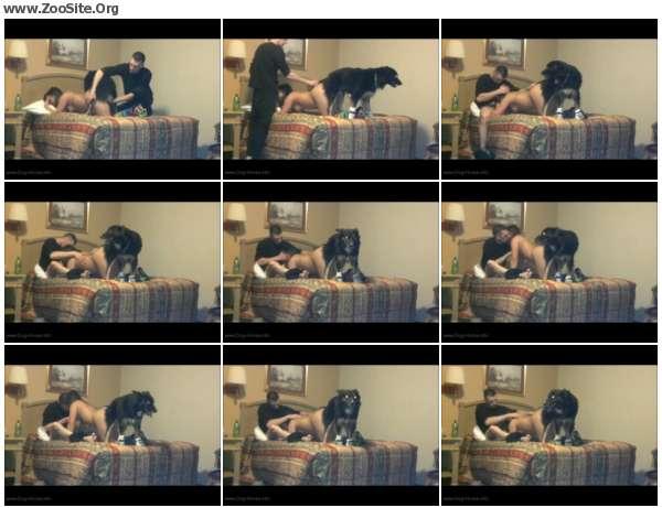 ce90cc605970143 - Men, Dog, Girls - Dog Porn Video