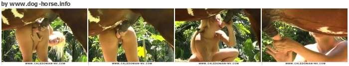 http://images.imagebam.com/63/48/05/962006583135283.jpg