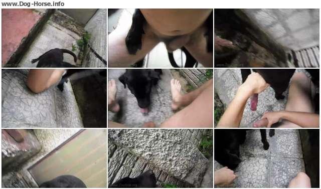 http://images.imagebam.com/a0/da/02/acd79f635192253.jpg
