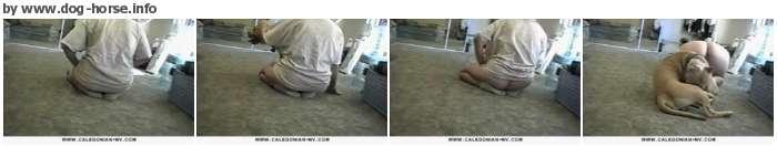 http://images.imagebam.com/a4/39/0c/a8a450611176203.jpg