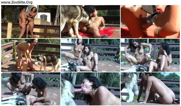 af2da8605978213 - Emily Natasha Drink Dog Cum Crazy - Dog Porn Video