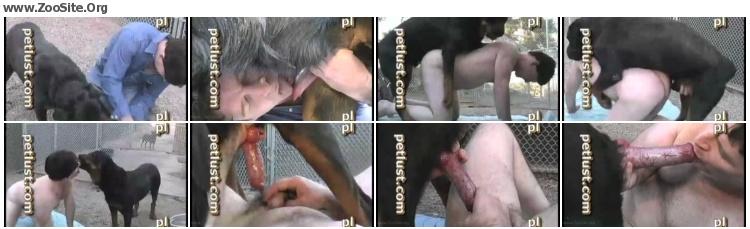 ef4386619028683 - Petlust Male Bestiality - Neo Knees - Male Bestiality Video