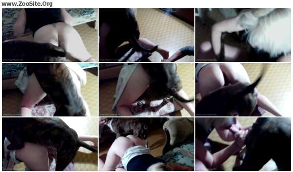 d733cc605970393 - Tanya Ola Dog Porn - Dog Porn Video