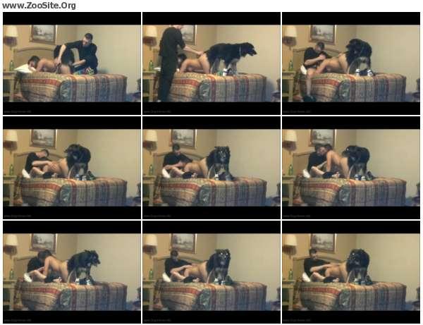 f5c0eb610350183 - ZooSex Amateur - Men, Dog, Girls