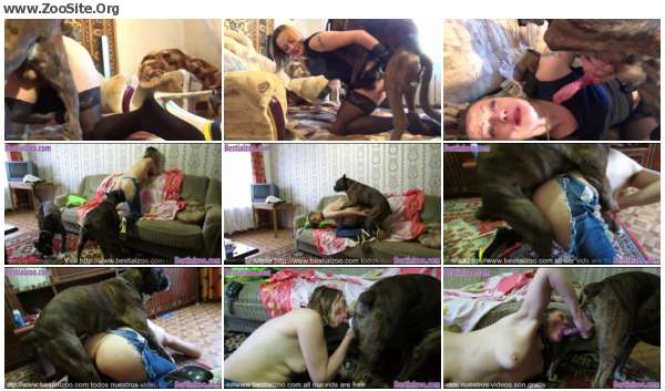 69fd54605970443 - One Time In Russia    - Dog Porn Video