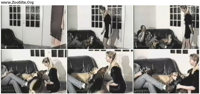 8553f7622031973 - ANIMAL SEX N1 - TWO DOGS, SEVEN CUMSHOTS - Bestiality Movie